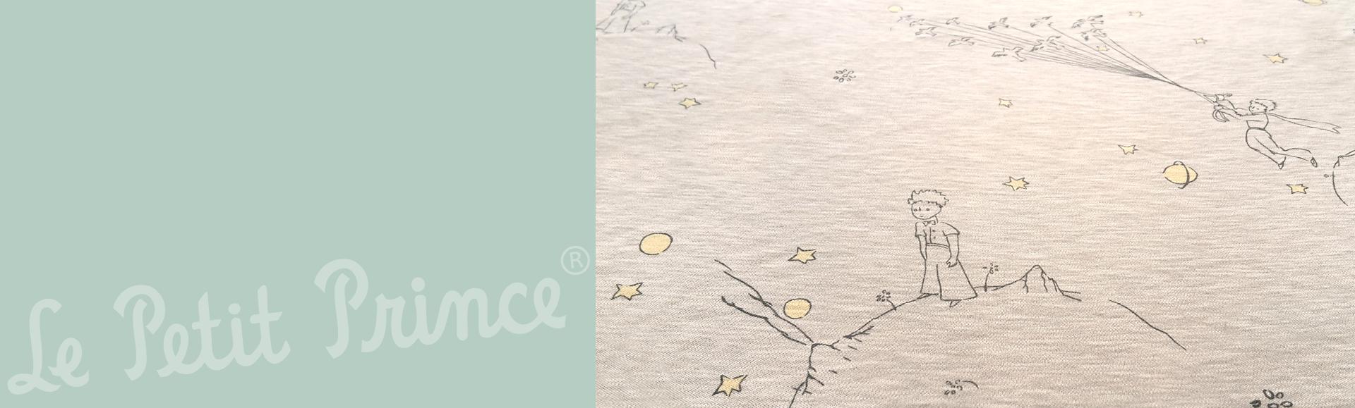 Le Petit Prince by manduca Sling